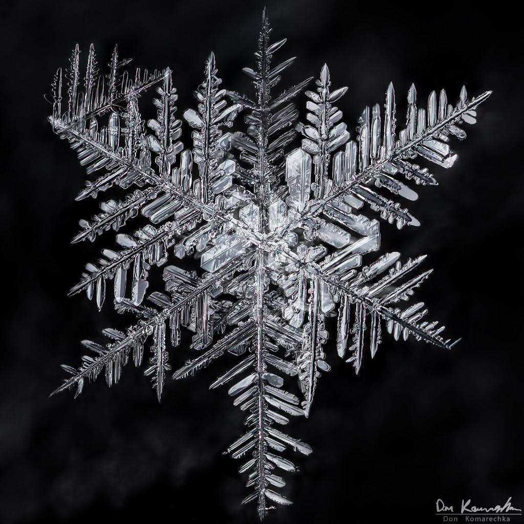IMAGE: http://www.donkom.ca/potn/snowflakes/1d4-snowflake16.jpg