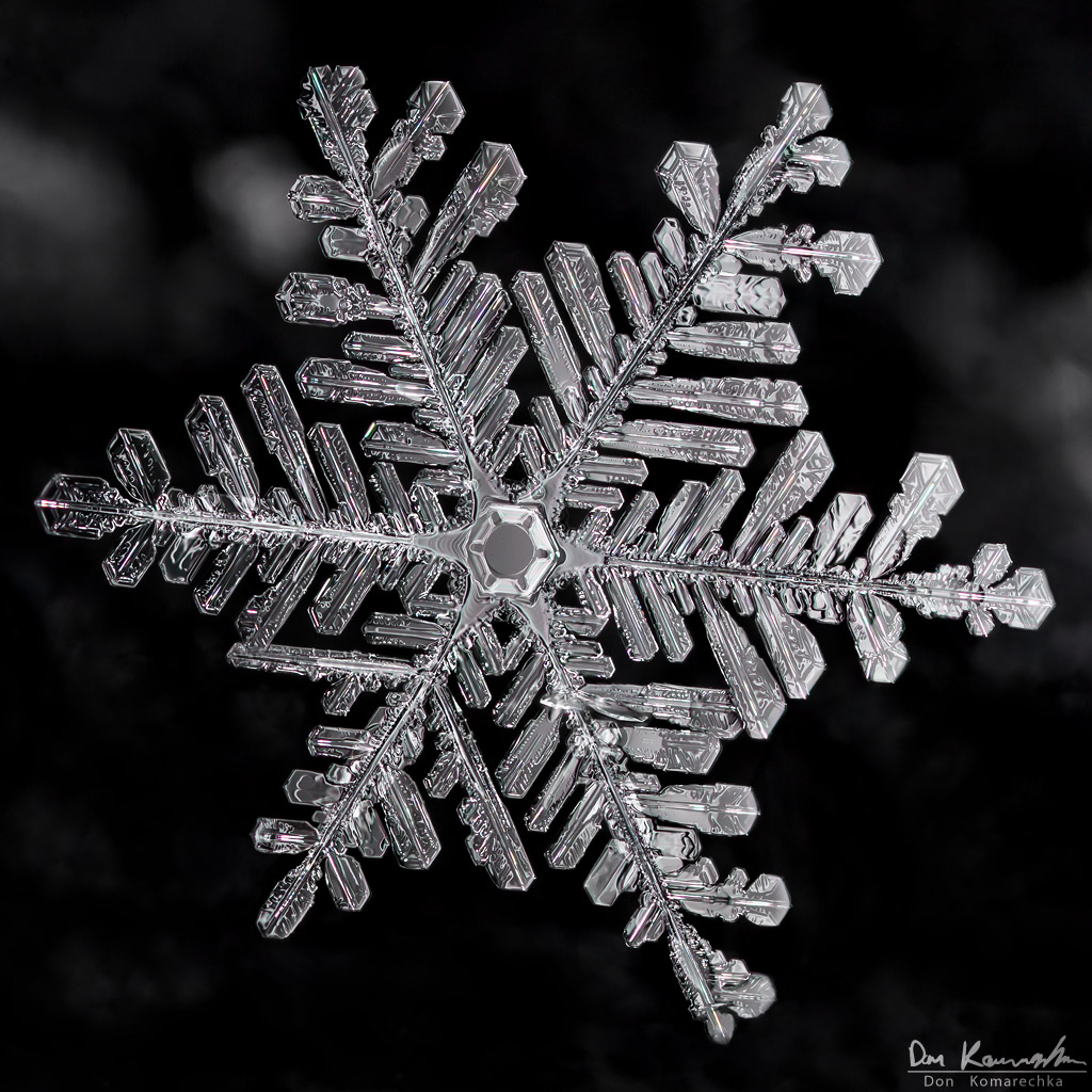 January snowflakes pictures