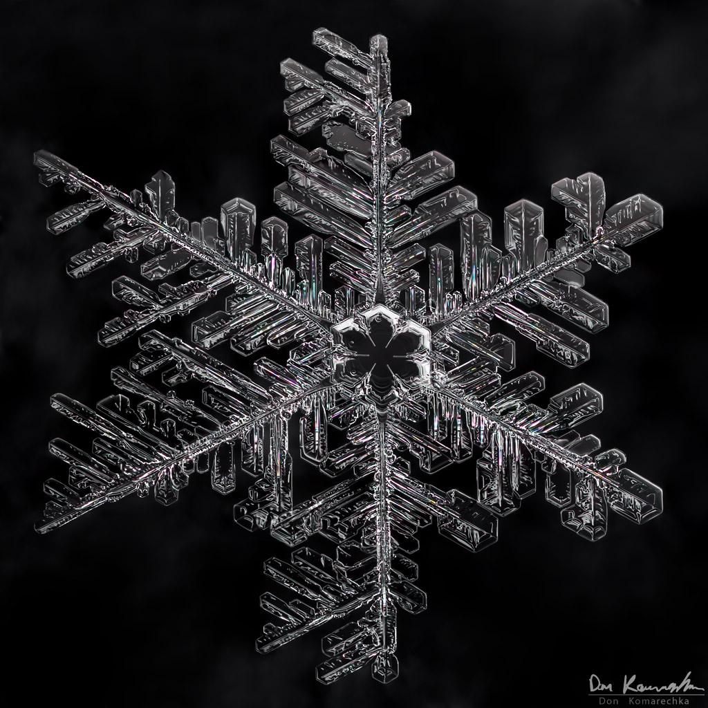 IMAGE: http://www.donkom.ca/potn/snowflakes/1d4-snowflake5.jpg