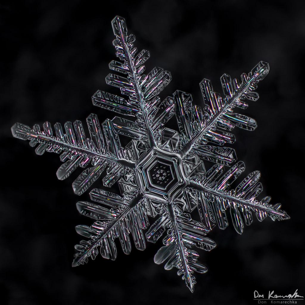 IMAGE: http://www.donkom.ca/potn/snowflakes/mar4-snowflake6.jpg