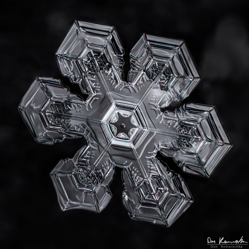 IMAGE: http://www.donkom.ca/potn/snowflakes/mar4-snowflake9.jpg