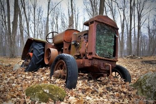 old rusted tractor in a forest